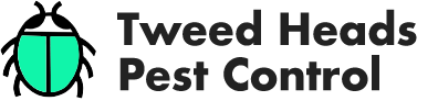 Tweed Heads Pest Control